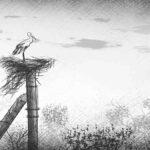 El accidente de Chernobyl: impacto de la radiación en la naturaleza y los animales